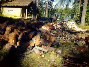 A wet dream of a lumberjack.